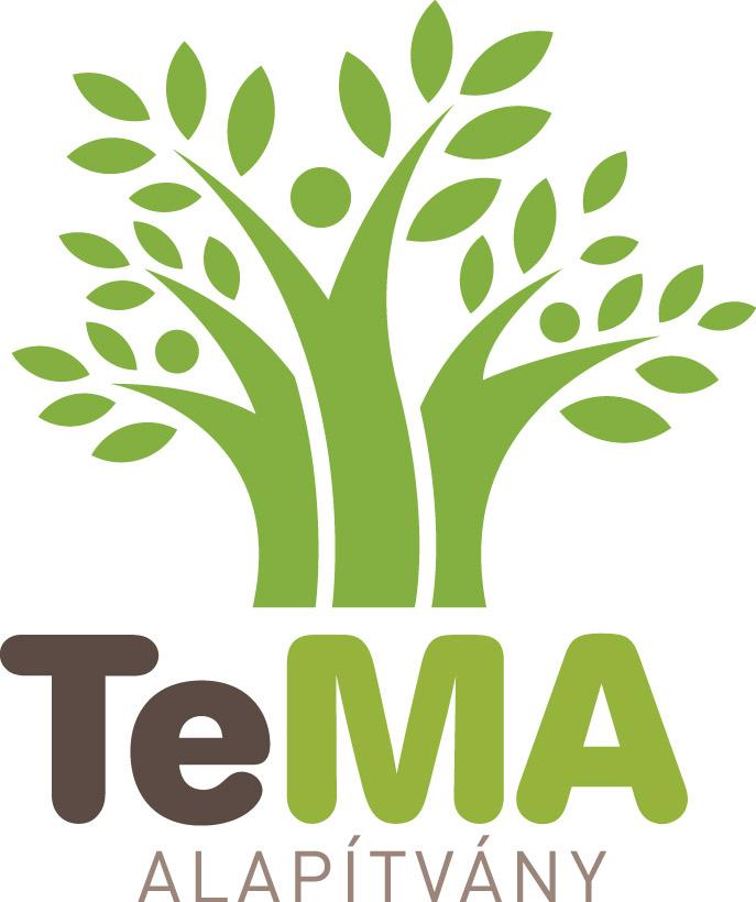 A TeMA Tehetség Menedzsment Alapítvány támogatási programja